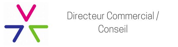 Directeur Commercial / Conseil